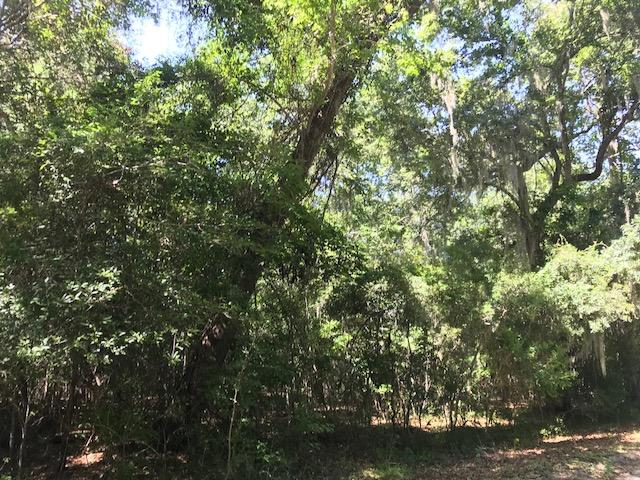 14 Black Swamp Road Johns Island, SC 29455