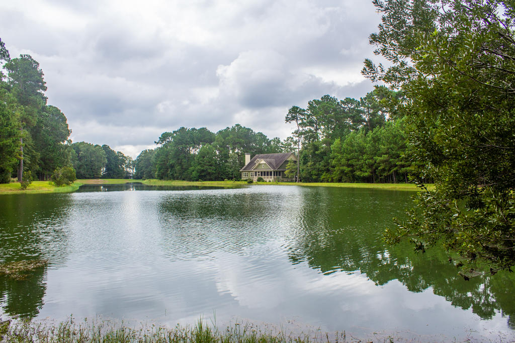 4556 Carriage House Way Hollywood, SC 29470