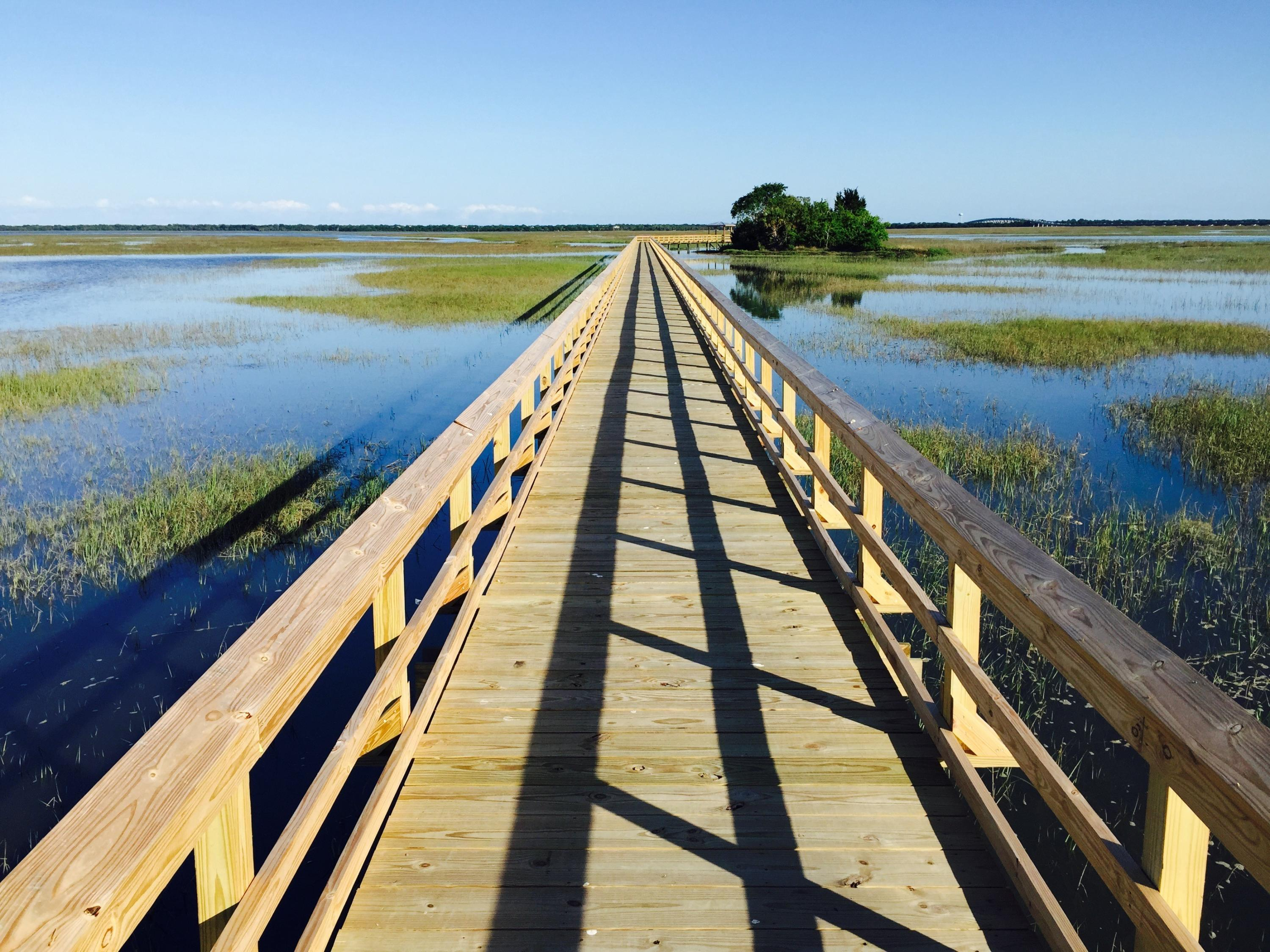 Oyster Point Homes For Sale - 1659 Red Tide, Mount Pleasant, SC - 9