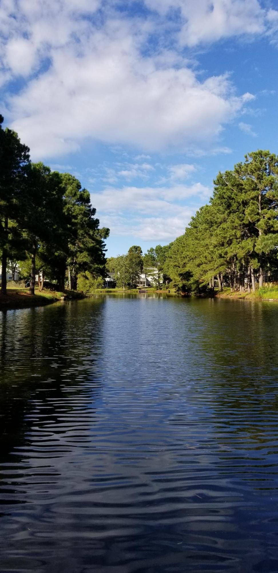 1887 Falling Creek Circle Mount Pleasant, SC 29464