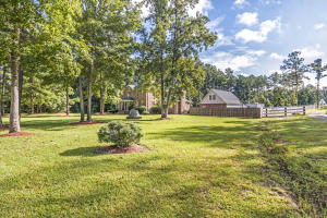822 HIGHWAY 61, RIDGEVILLE, SC 29472  Photo 11