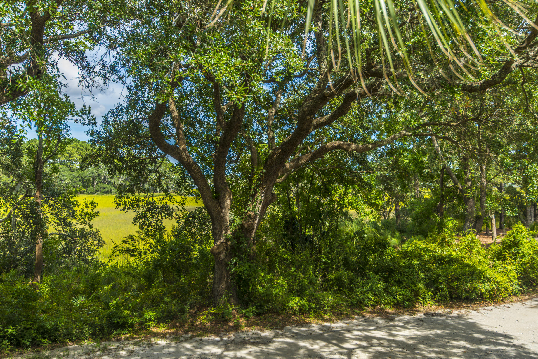 Daniel Island Homes For Sale - 1859 Pierce, Charleston, SC - 9
