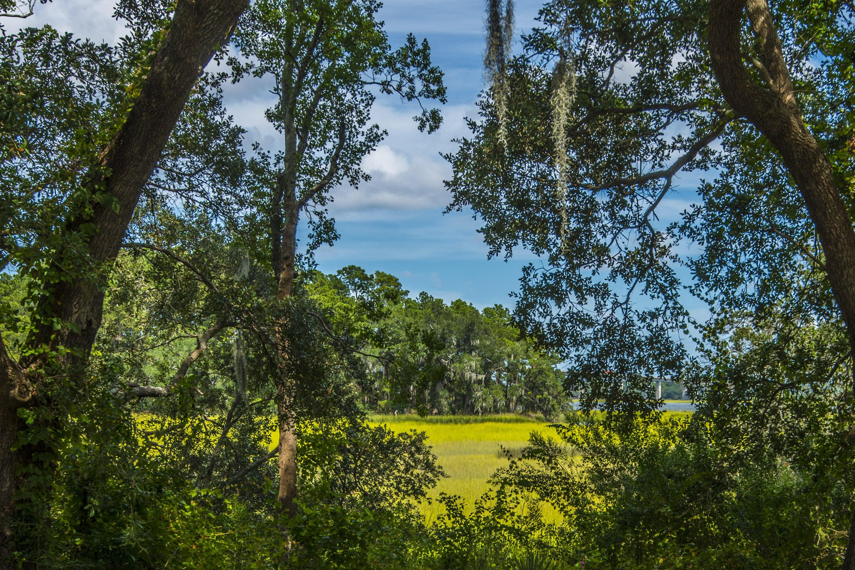 Daniel Island Homes For Sale - 1859 Pierce, Charleston, SC - 5