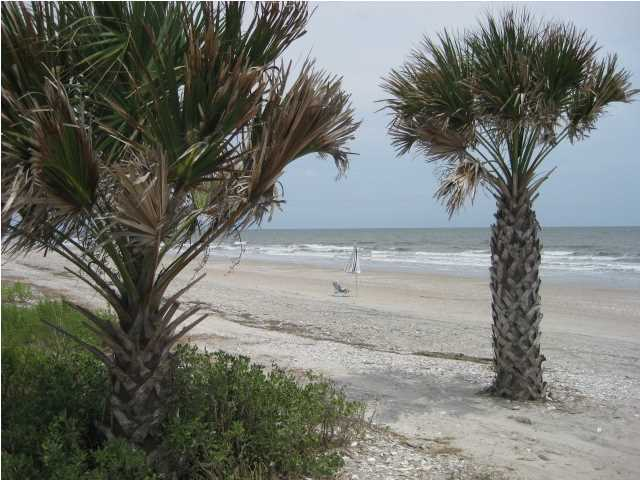 40 Lost Village Trail Edisto Island, SC 29438