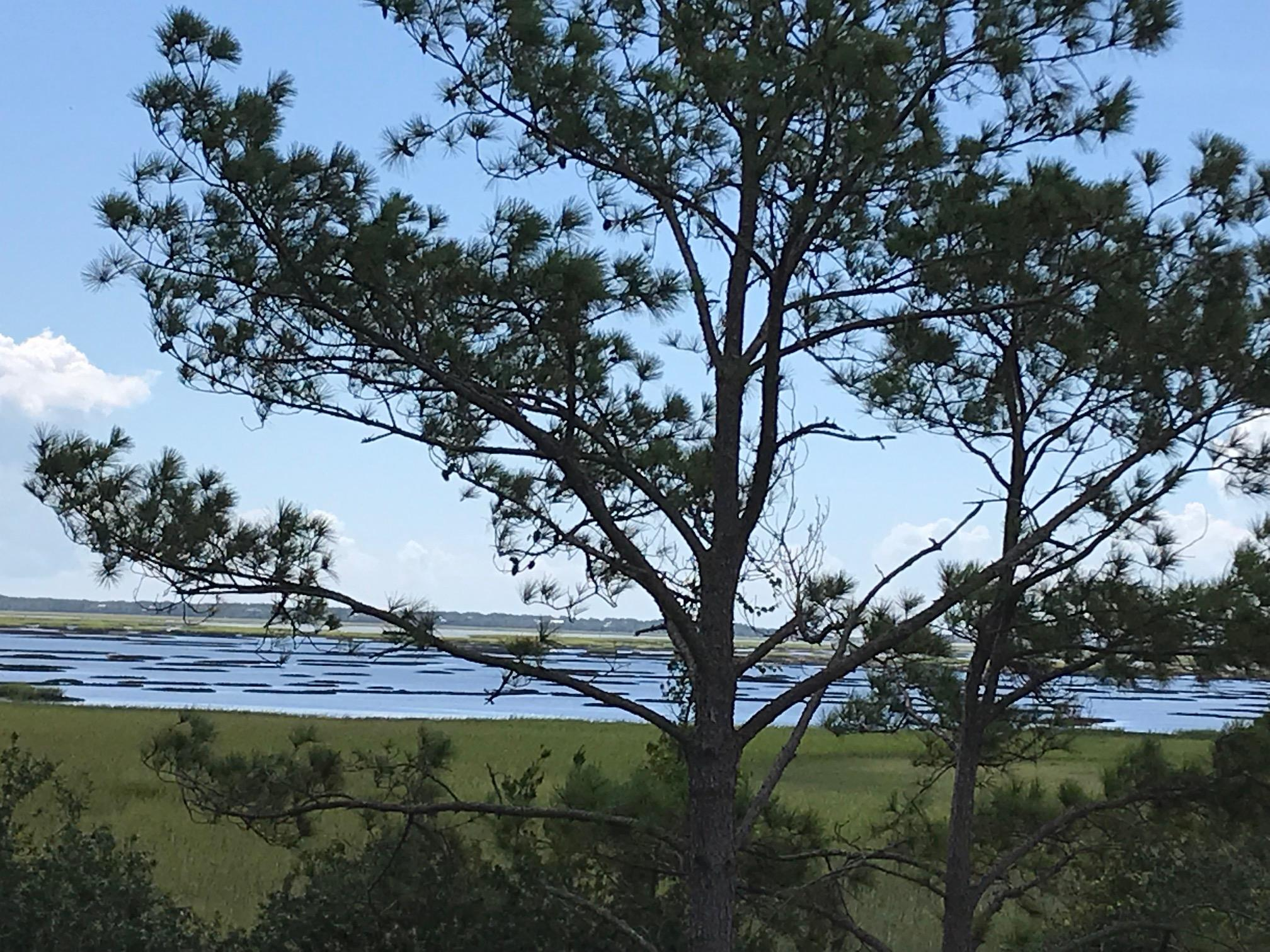 Stratton by the Sound Homes For Sale - 3628 Tidal Flat, Mount Pleasant, SC - 6