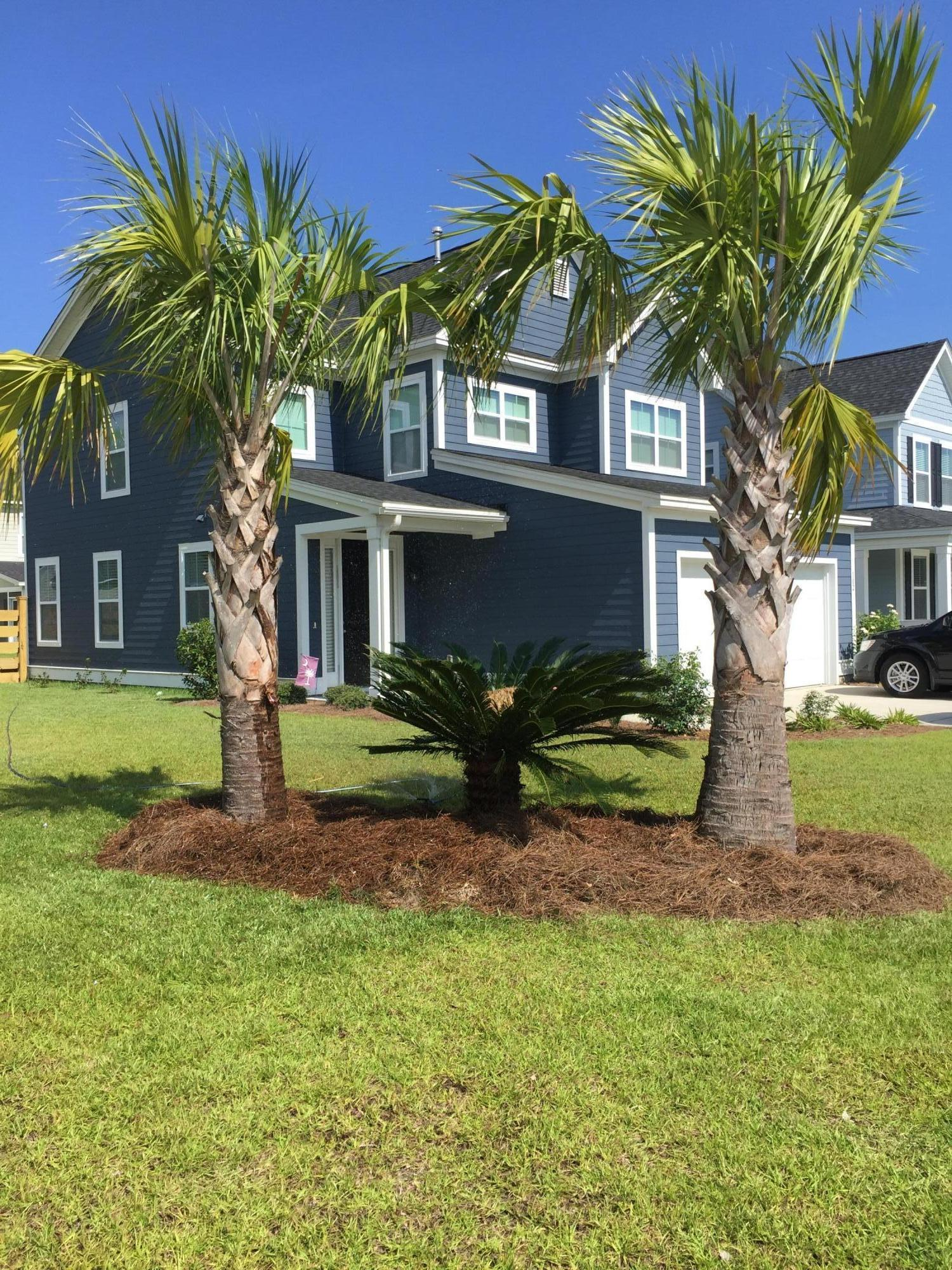 102 Indigo Marsh Circle Charleston, SC 29492