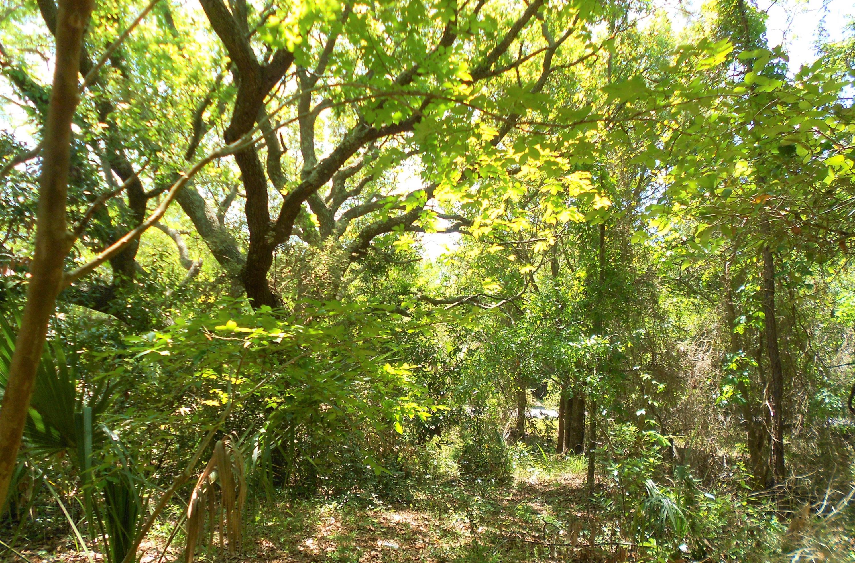 Wild Dunes Lots For Sale - 6 Fairway Oaks Lane, Isle of Palms, SC - 11