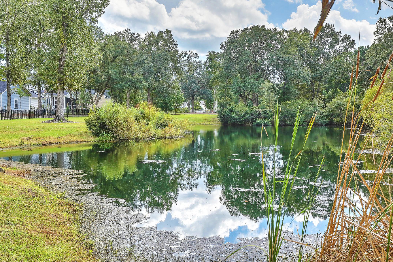 Carolina Park Homes For Sale - 3683 Codorus, Mount Pleasant, SC - 19
