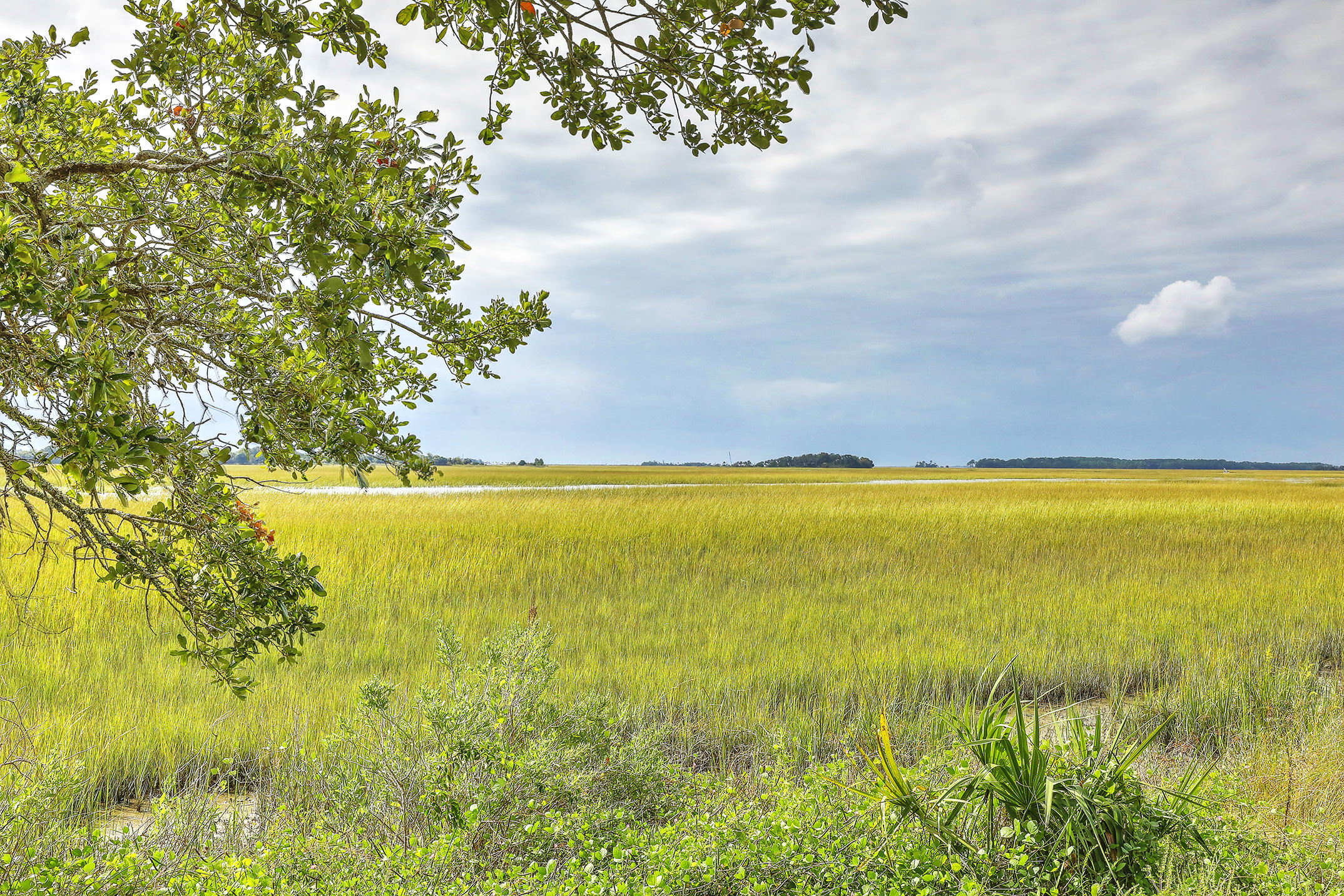 The Preserve at The Clam Farm Homes For Sale - 1012 Lighterman, Charleston, SC - 6
