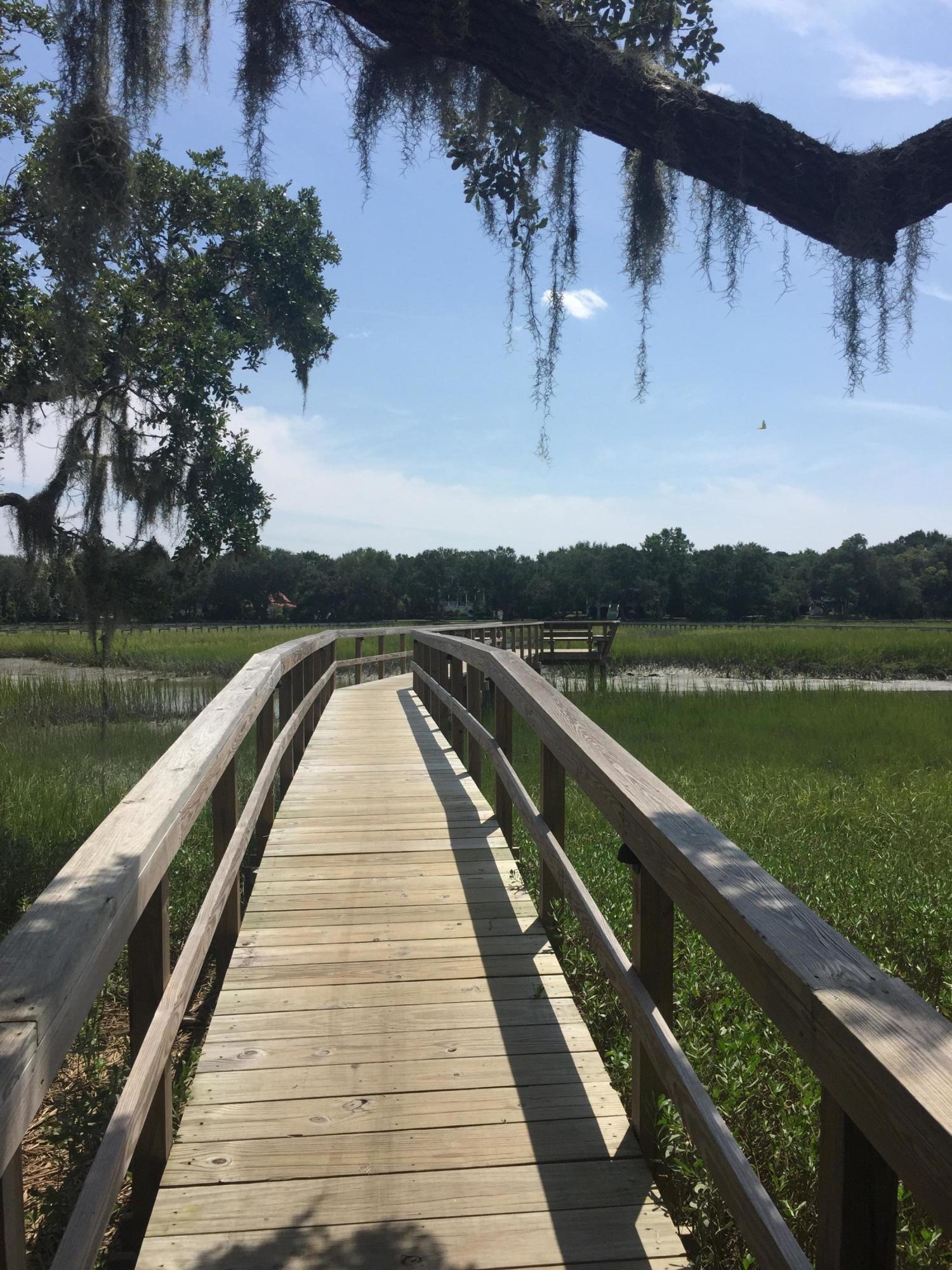 Seaside Plantation Homes For Sale - 1149 Hills Plantation, Charleston, SC - 38