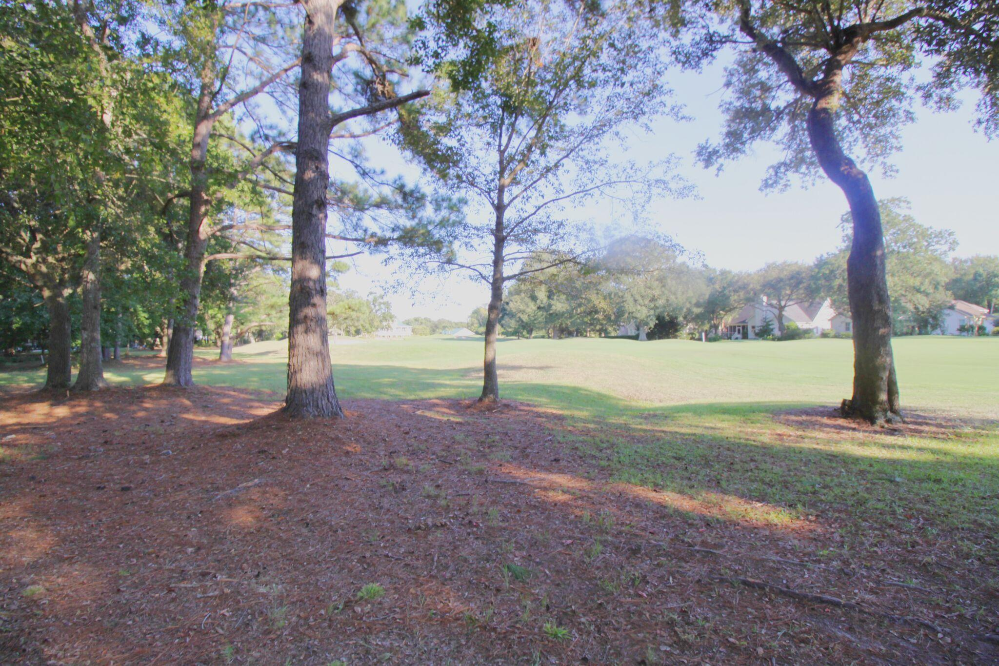 Charleston National Homes For Sale - 3184 Linksland, Mount Pleasant, SC - 15