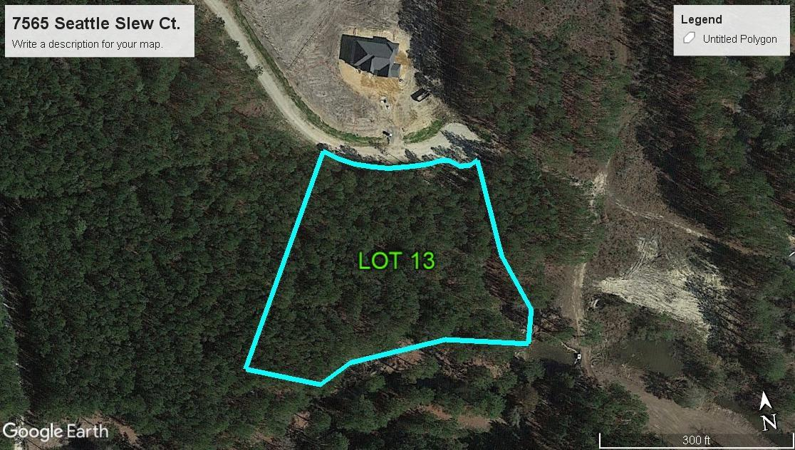 7565 Seattle Slew Court Awendaw, SC 29429