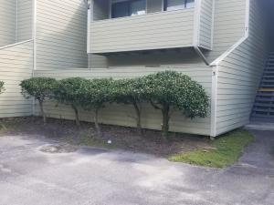 2340 Treescape Drive, Charleston, SC 29414