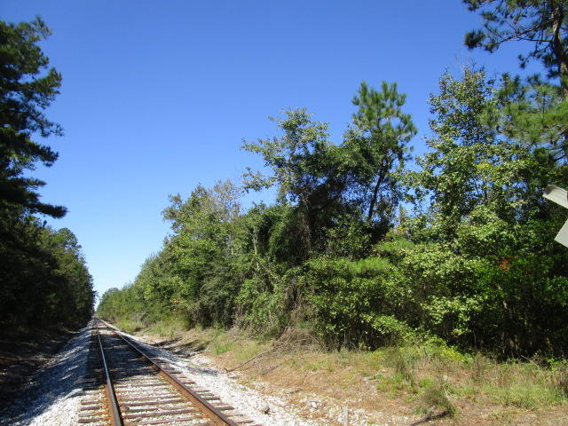 19 Acres Old #6 Highway Santee, SC 29142