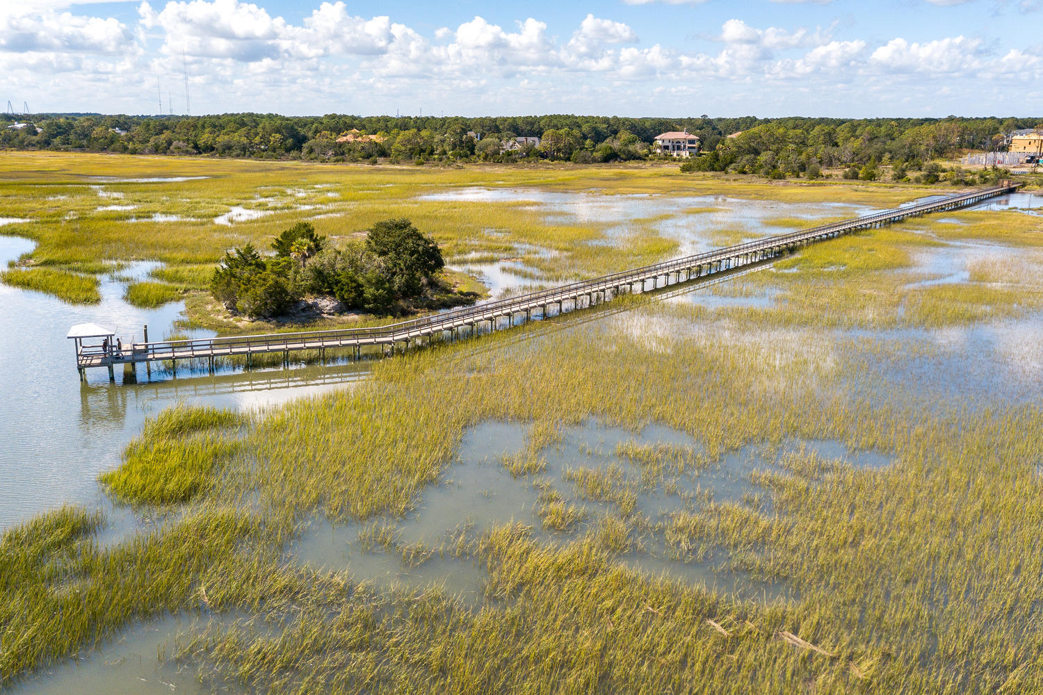 Oyster Point Homes For Sale - 1584 Red Tide, Mount Pleasant, SC - 60