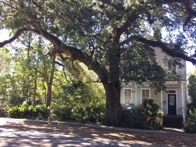 Old Village Homes For Sale - 753 Pitt, Mount Pleasant, SC - 2