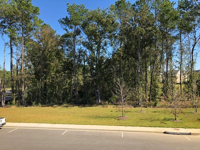 Dunes West Homes For Sale - 2874 Clearwater, Mount Pleasant, SC - 0