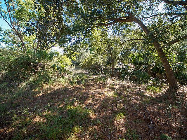 Grassy Creek Homes For Sale - 368 Tidal Terrace, Mount Pleasant, SC - 46