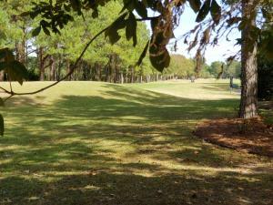 Professionally designed Golf course