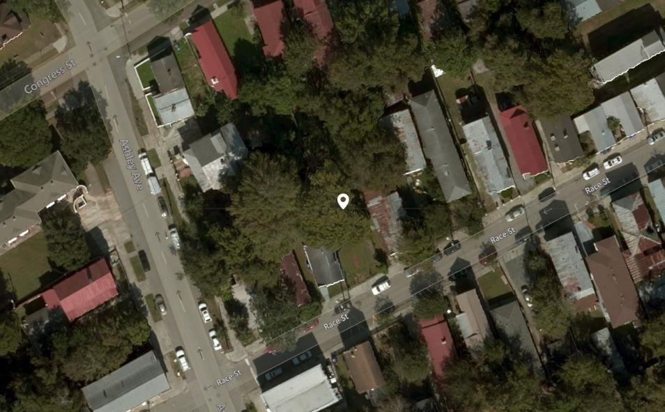 438 Race Street Charleston, SC 29403