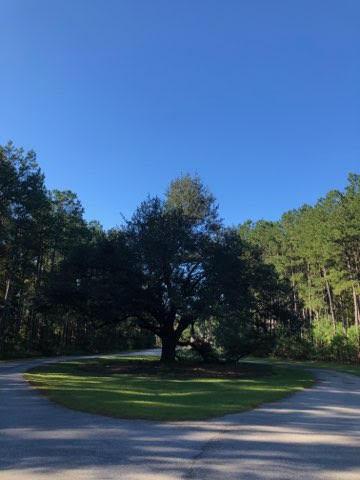 315 Angel Oak Drive Bonneau, SC 29431