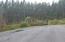 1334 Wood Sorrel Drive, Moncks Corner, SC 29461