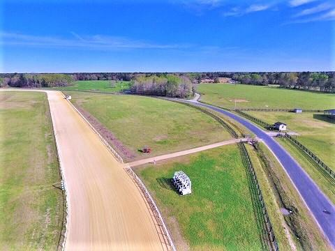 None Lots For Sale - 921 Rock Hill, Holly Hill, SC - 6