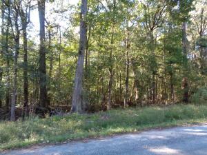 18a Twin Lakes Drive, Summerville, SC 29483