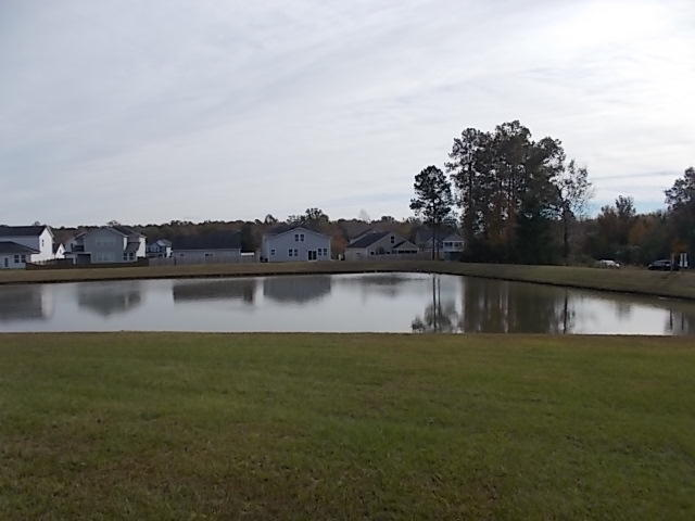 110 Pleasant Hill Drive Goose Creek, SC 29445