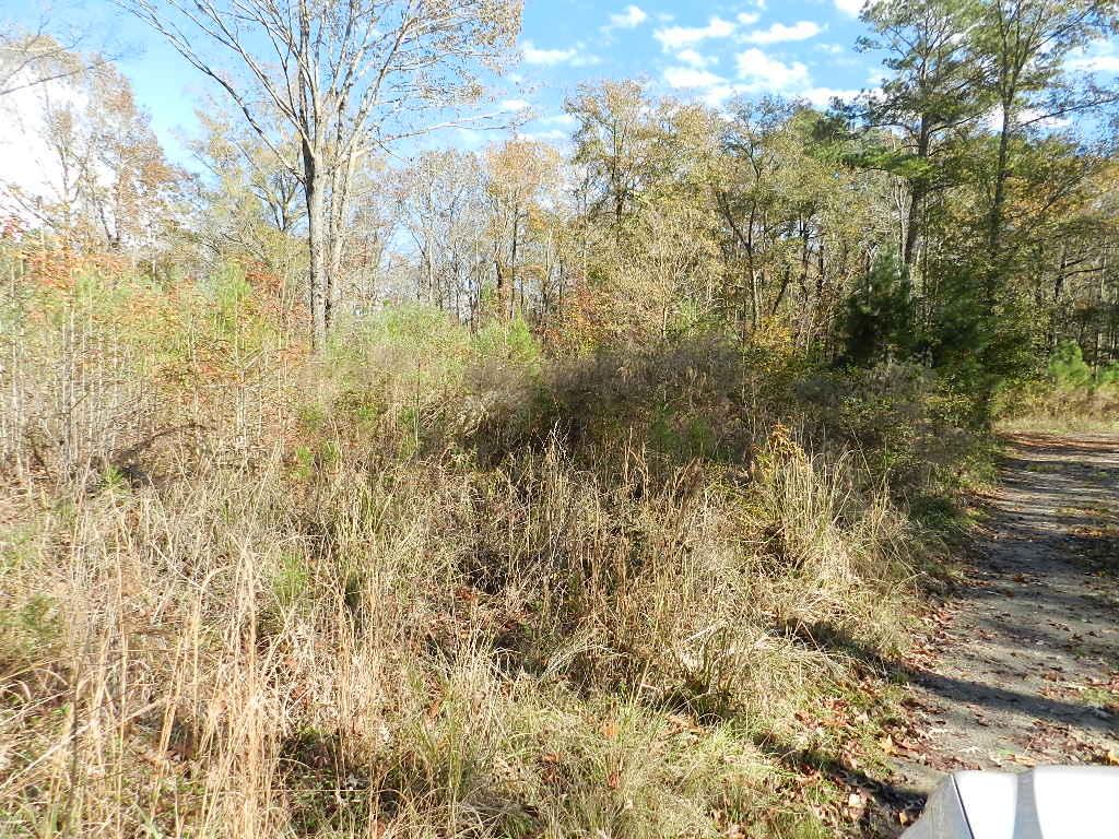 Lindy Creek Road Goose Creek, SC 29445
