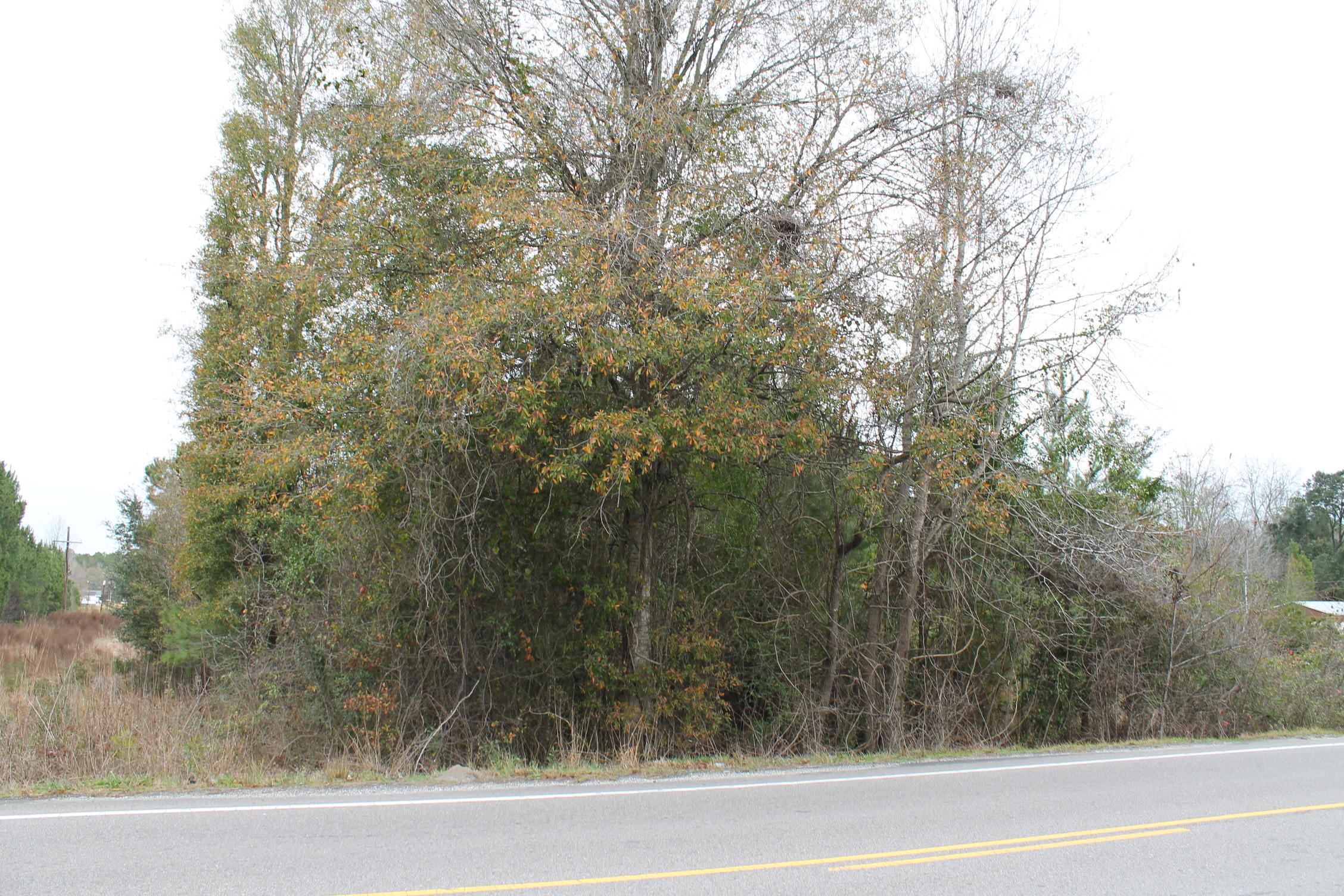 Old Highway Six Cross, SC 29436