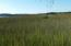 Expansive Marsh and Water View.