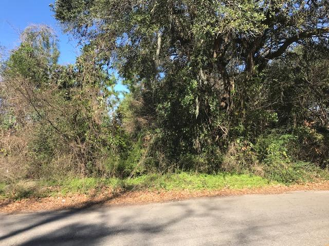 Lot 37 Parsonage Road Charleston, SC 29414