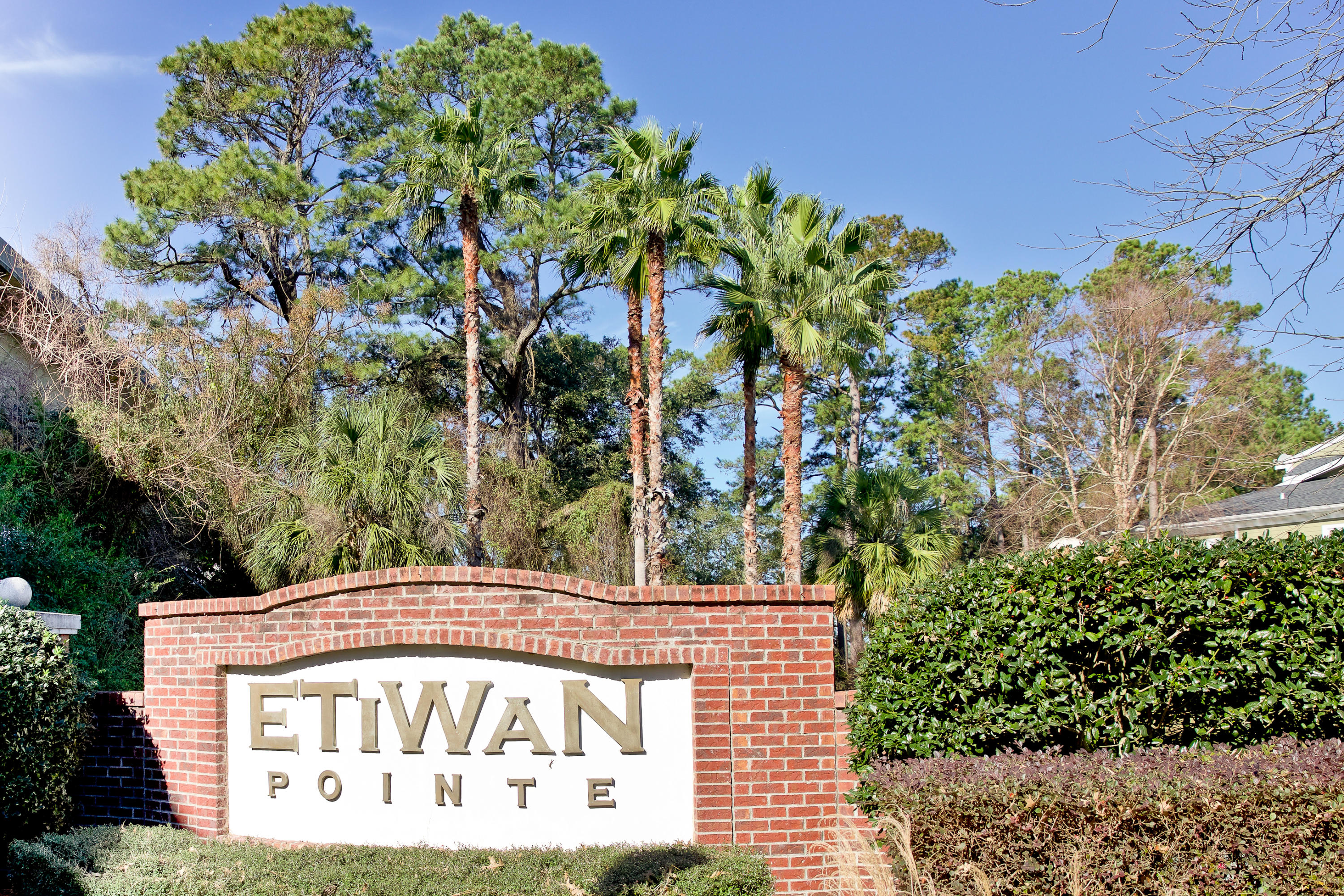 113 Etiwan Pointe Drive Mount Pleasant, SC 29464