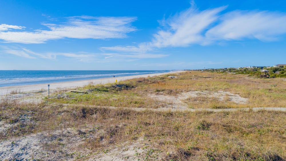 Isle of Palms Lots For Sale - 0 Palm, Isle of Palms, SC - 19