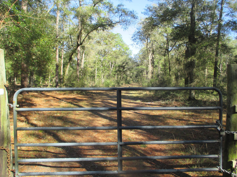 None Homes For Sale - 4206 Ashley River, Charleston, SC - 32