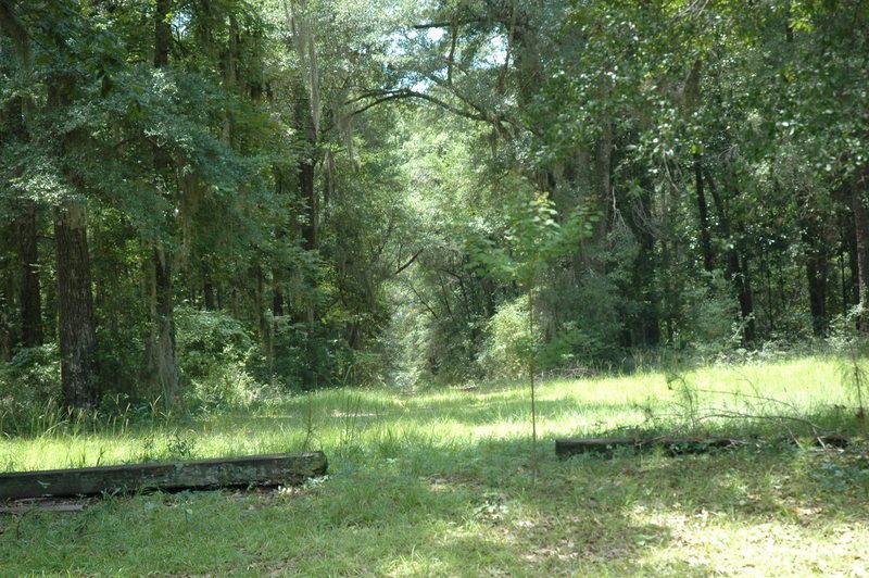 None Homes For Sale - 4206 Ashley River, Charleston, SC - 18
