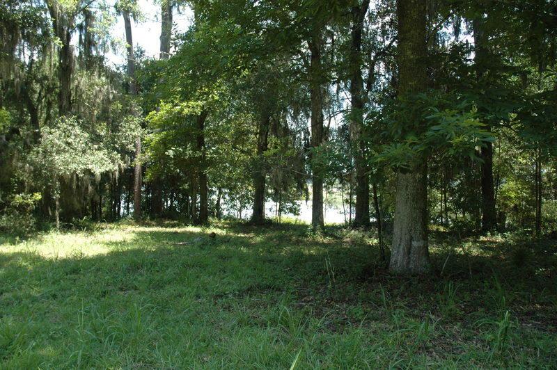 None Homes For Sale - 4206 Ashley River, Charleston, SC - 16