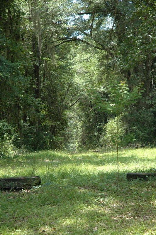 None Homes For Sale - 4206 Ashley River, Charleston, SC - 12