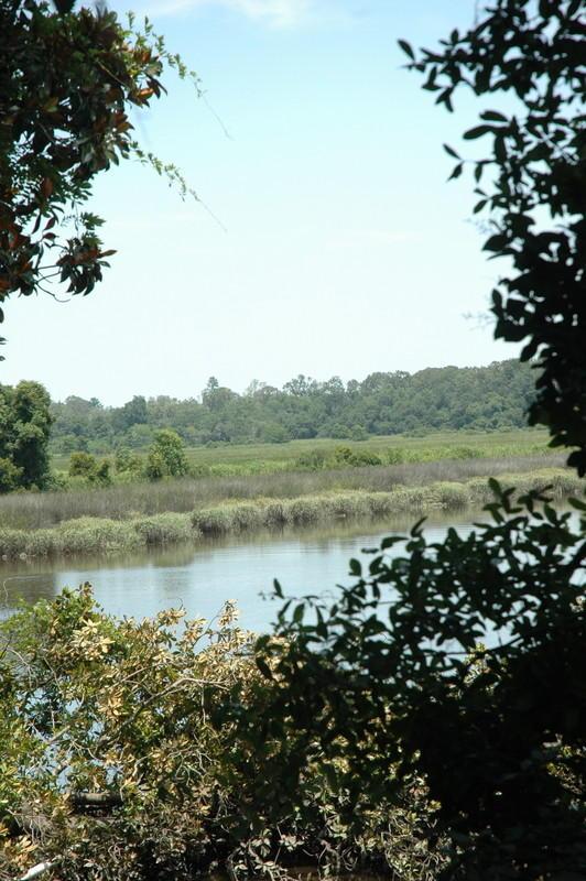 None Homes For Sale - 4206 Ashley River, Charleston, SC - 9