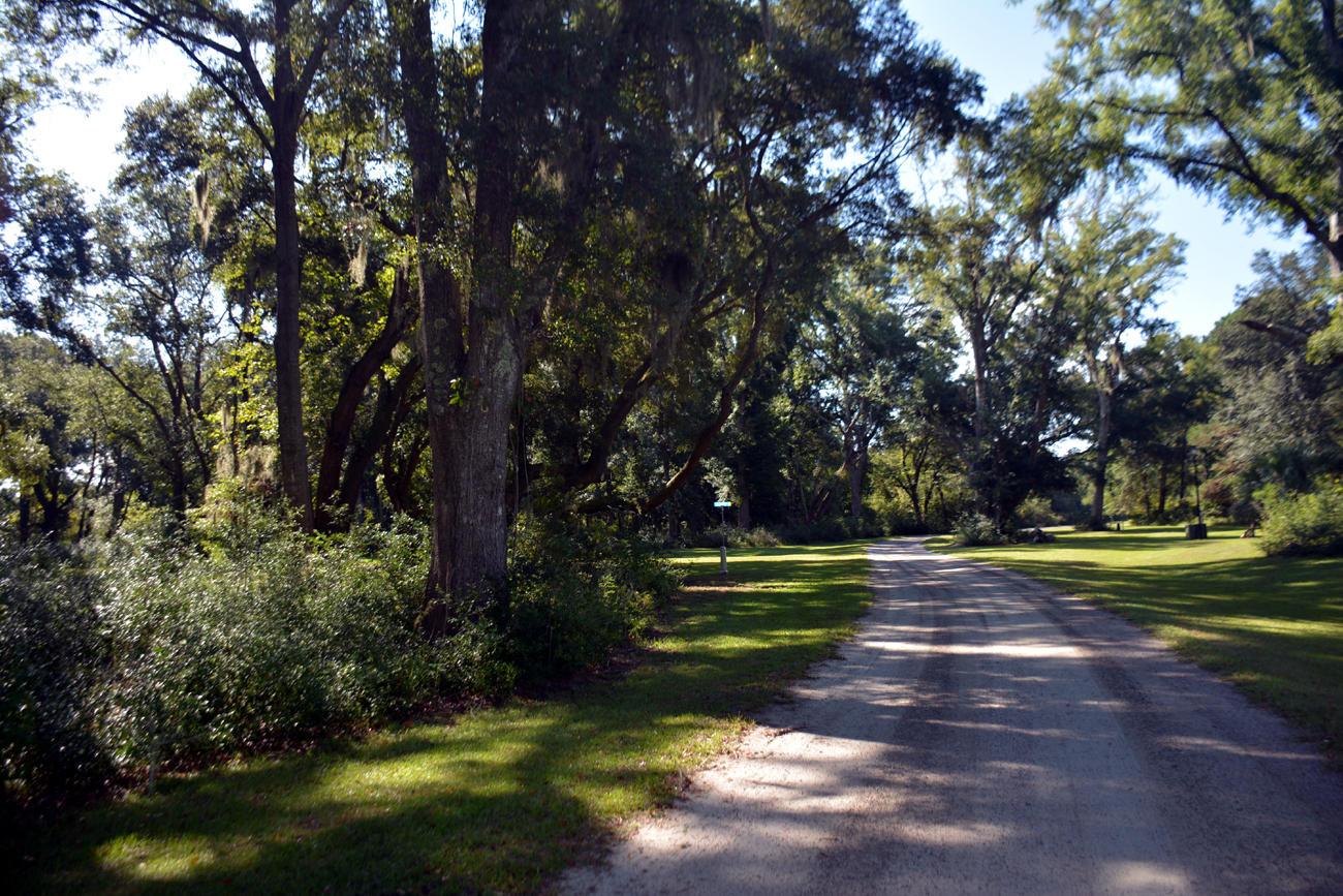 31 Deer Tract Drive Edisto Island, SC 29438