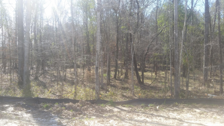 562 Mountain Laurel Circle Goose Creek, SC 29445