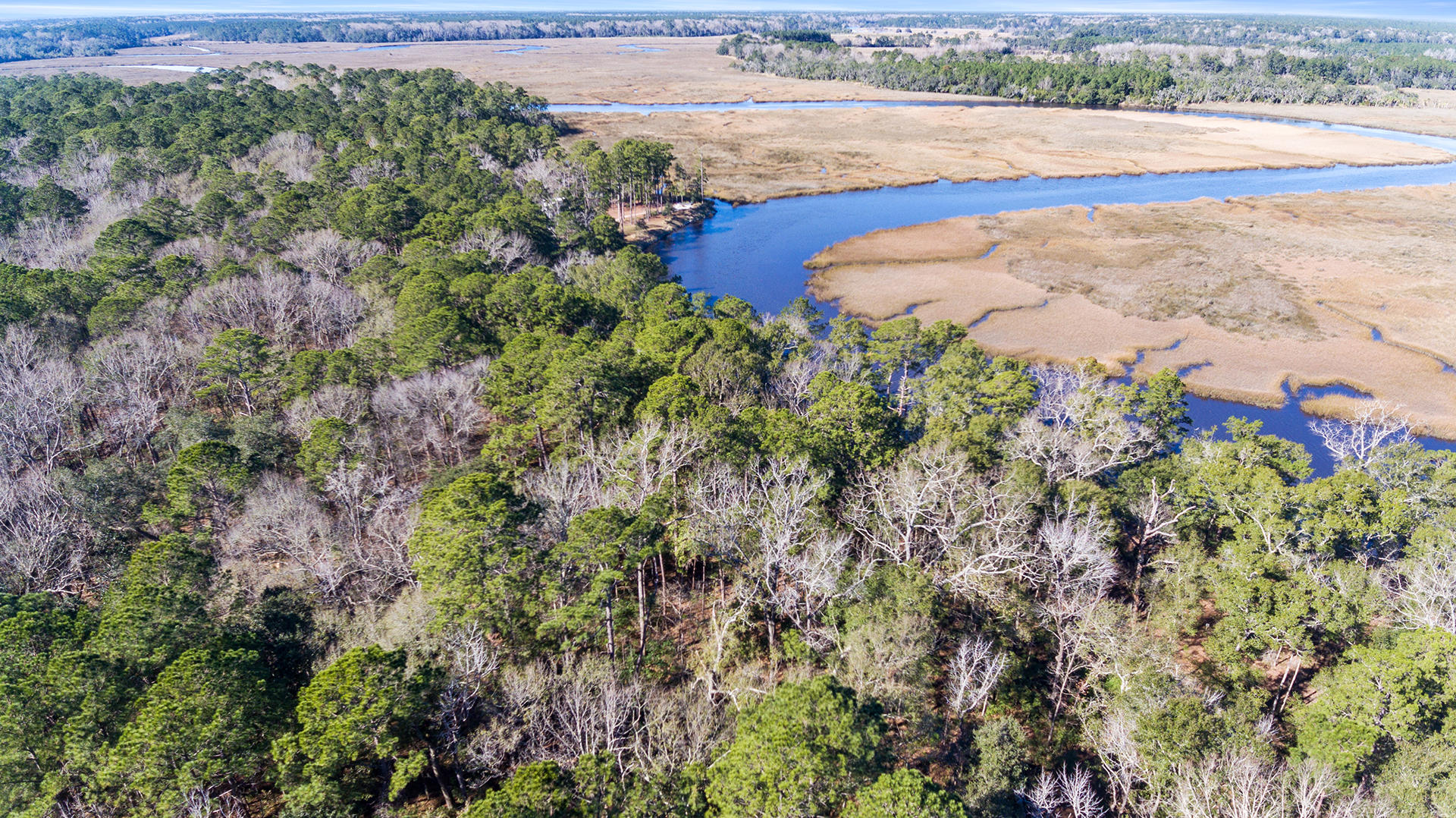 4 Tilly Island Way Green Pond, SC 29446