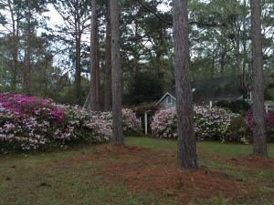 830 Carolina Road, McClellanville, SC 29458