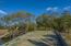 1 Savage Island, Edisto Island, SC 29438