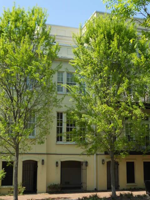 4 Marbel Lane Charleston, SC 29403