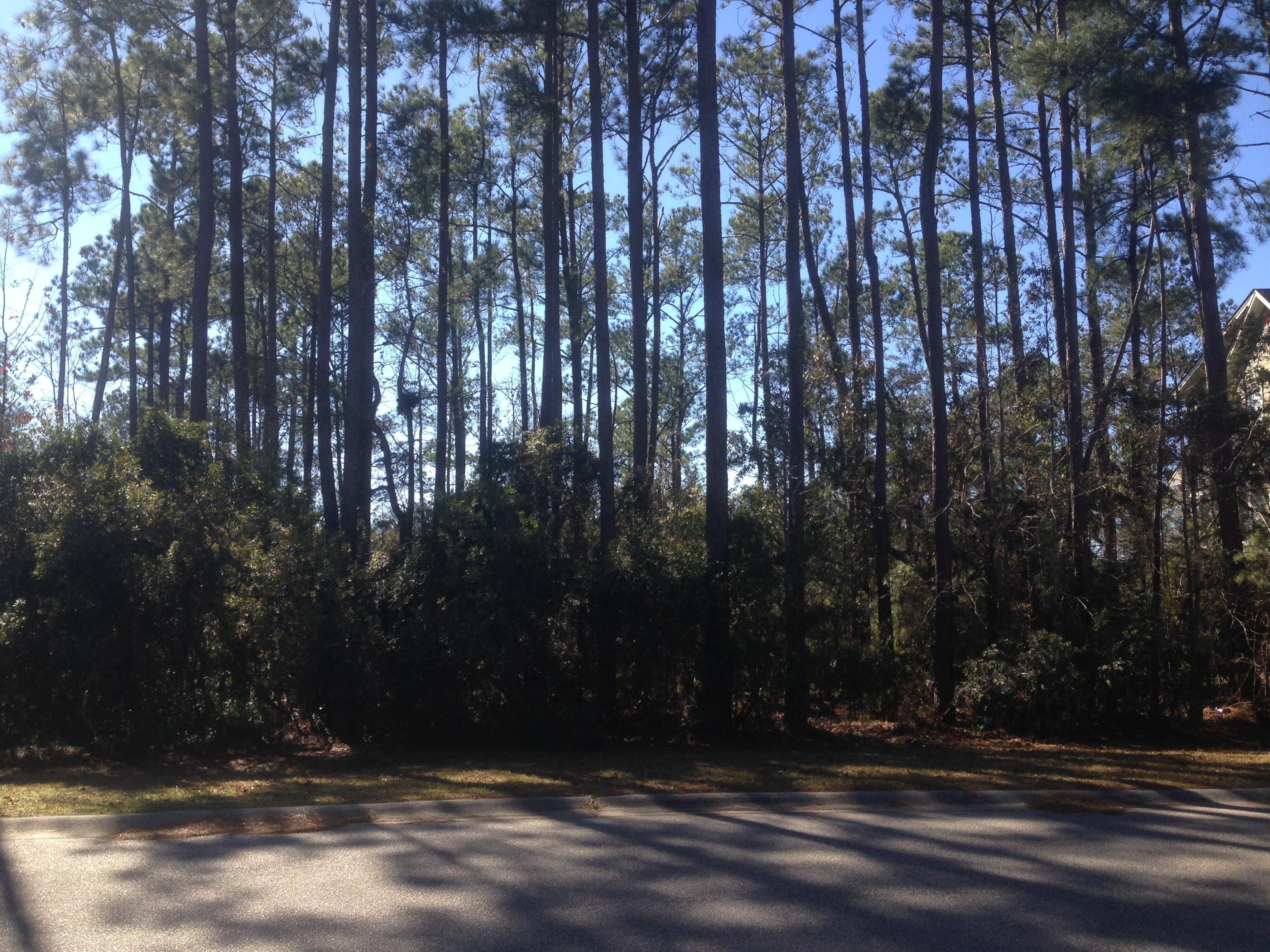 2709 Oak Manor Drive Mount Pleasant, SC 29466