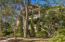 3516 Henrietta Hartford Road, Mount Pleasant, SC 29466