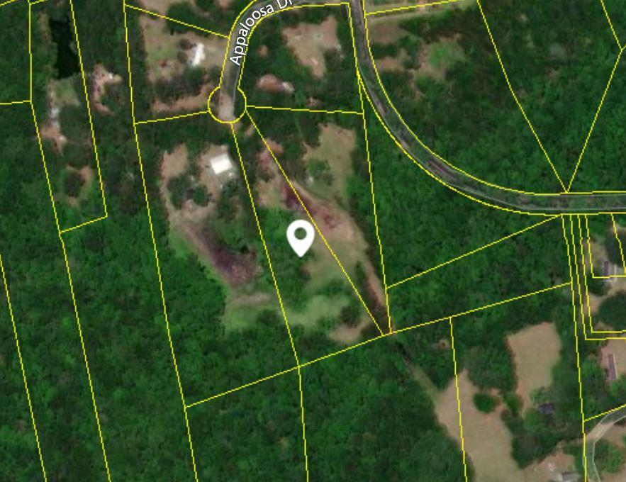1205 Appaloosa Road Johns Island, SC 29455