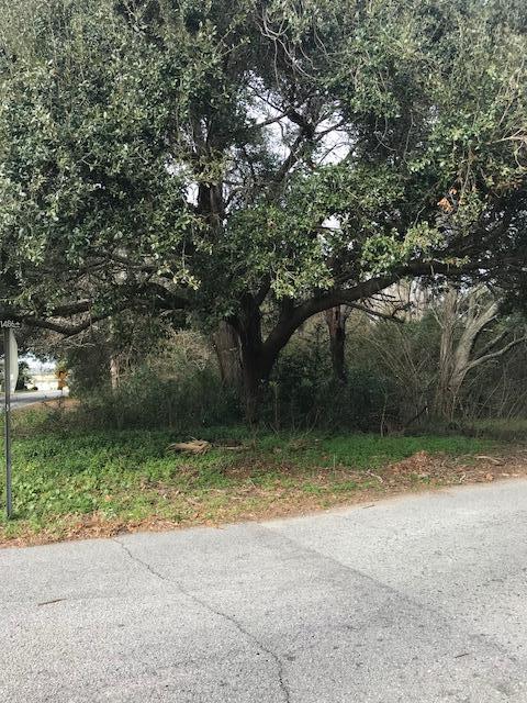 James Drive Charleston, SC 29412